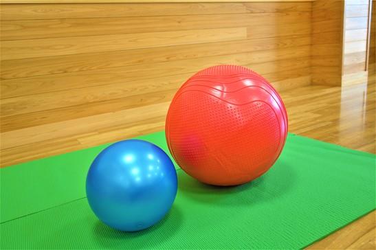 粗大運動によるバランスボール指導